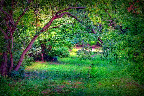 2011 canon eos dslr 500d t1i app rebel iphoneedit snapseed hdr handyphoto geotagged geotag facebook lynchburg landscape august summer rural ohio jamiesmed midwest photography highlandcounty