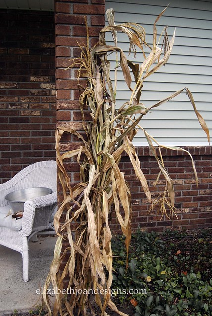 DIY Fall Corn-husk Wreath
