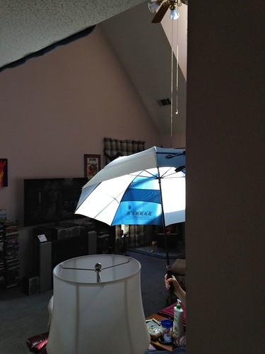 CrabAppleLane Living Room - January 25, 2015