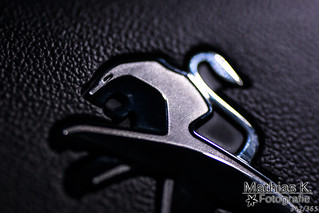 Peugeot | Projekt | Tag 342