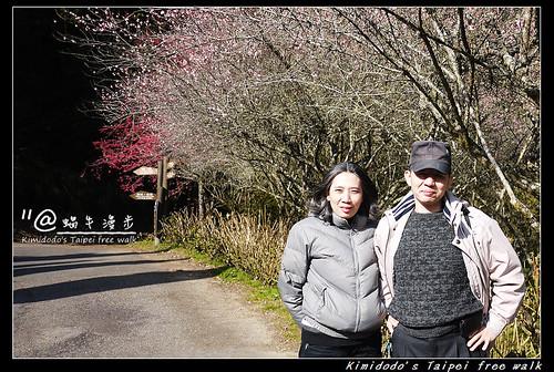 杉林溪 (26)