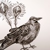 Work in progress, Aesop fable #art #drawing #illustration
