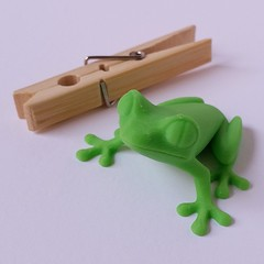 Get a #3dprinted #Treefrog from #Etsy ! https://www.etsy.com/ca/listing/215179964  #3dprinting #3dprint #morenap3d #ultimaker #treefrog #figurine #frog #etsy