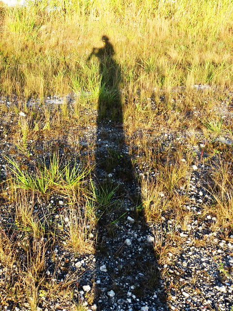 Selfie shadow 20150123