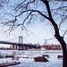 Polar Vortex in Brooklyn by Jorge Quinteros