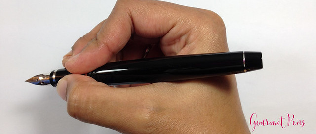 Review Pilot Elabo Fountain Pen - Soft Extra-Fine @JetPens @PilotPenUSA (12)
