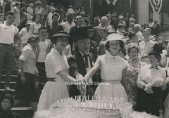 Davis 105 Diamond Jubilee