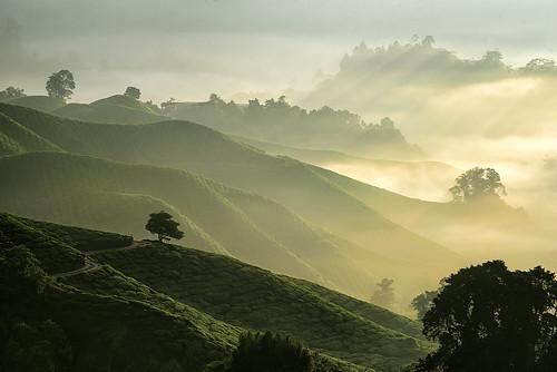 nature sunrise landscape photography nikon telephoto malaysia d750 tele glowing effect rol rayoflight 2015 cameroonhighlands