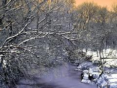 Snow Dallas Plano Richardson 019