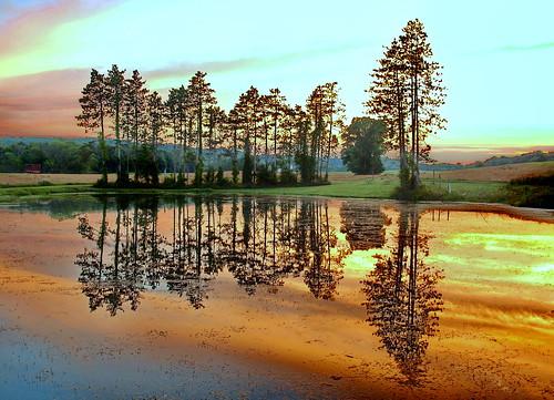 pond reflections malabarfarm ohiostatepark