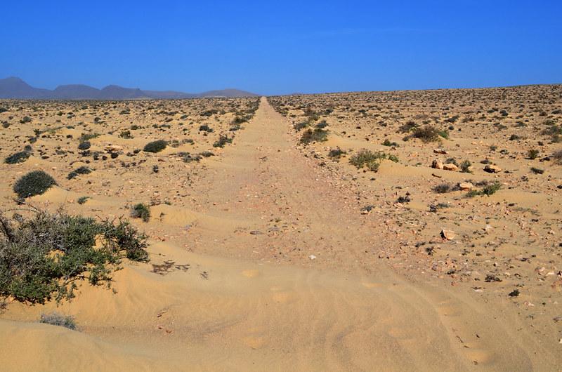 Sand Path Fuerteventura