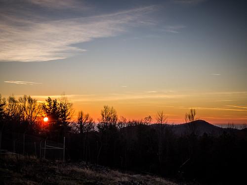 Sassafras Sunrise on New Years Day-18