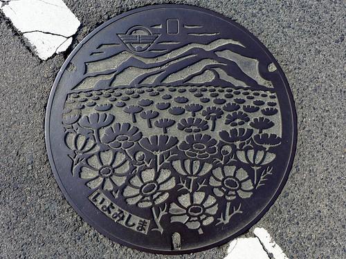 Iyomishima Ehime, manhole cover (愛媛県伊予三島市のマンホール)
