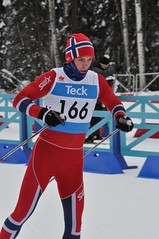 winter sport, nordic combined, individual sports, ski cross, skiing, sports, recreation, outdoor recreation, cross-country skiing, downhill,