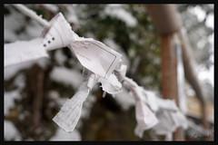 日本京都-金閣寺-雪.80