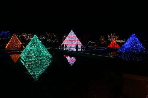 pyramid Flower Fantasy 2015 illumination at Ashikaga Flower Park 16