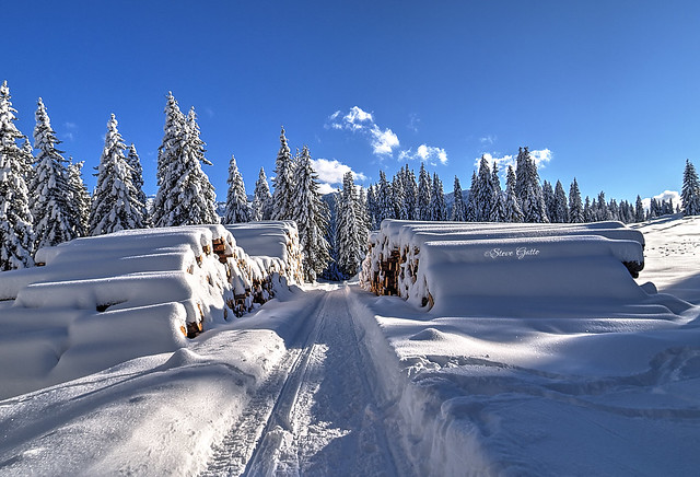 steve_steady64 - Enchanted landscape
