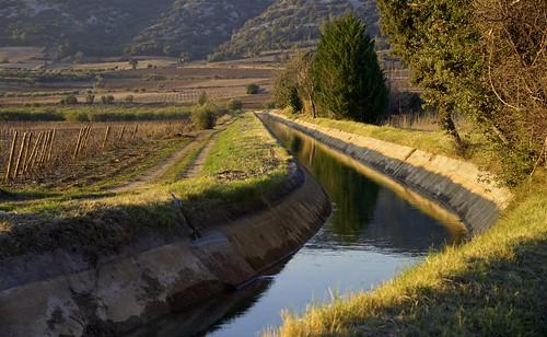 canal dans les vignes