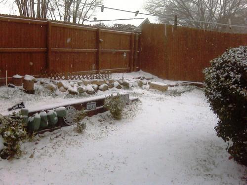 Snow on plot 2 27 15