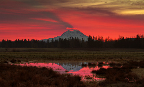 sky reflection sunrise washington pond tamron mtrainier pnw skyshadow 1riverat matthewreichel