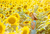Meet me at the sunflower field by Kohei Ueda (f.k.a. Lindeberg Feller)