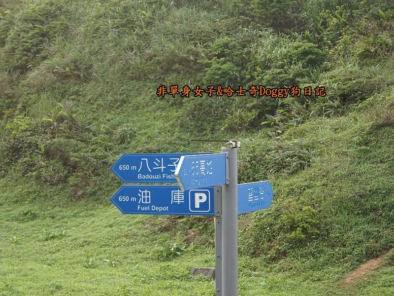 基隆海科館望幽谷30