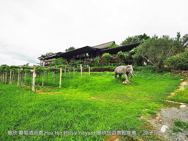 華欣 葡萄酒莊園 Hua Hin Hills Vineyard 華欣旅遊景點推薦 41