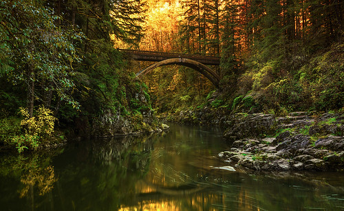 nature landscape fall sunrise lewisriver eeastfork yacolt wa footbridge reflection i