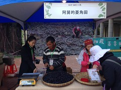 綠保標章起於官田水稻、菱角守護水雉的故事。