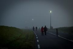 Dans la brume électrique - Photo of Montigny-sur-l'Hallue