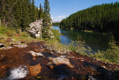 Interlakes Campground - Peter Lougheed PP