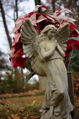 Angel, Plate 1