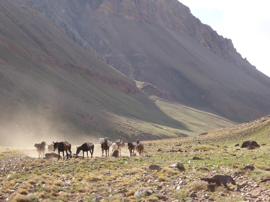 Horcones Valley, Argentina