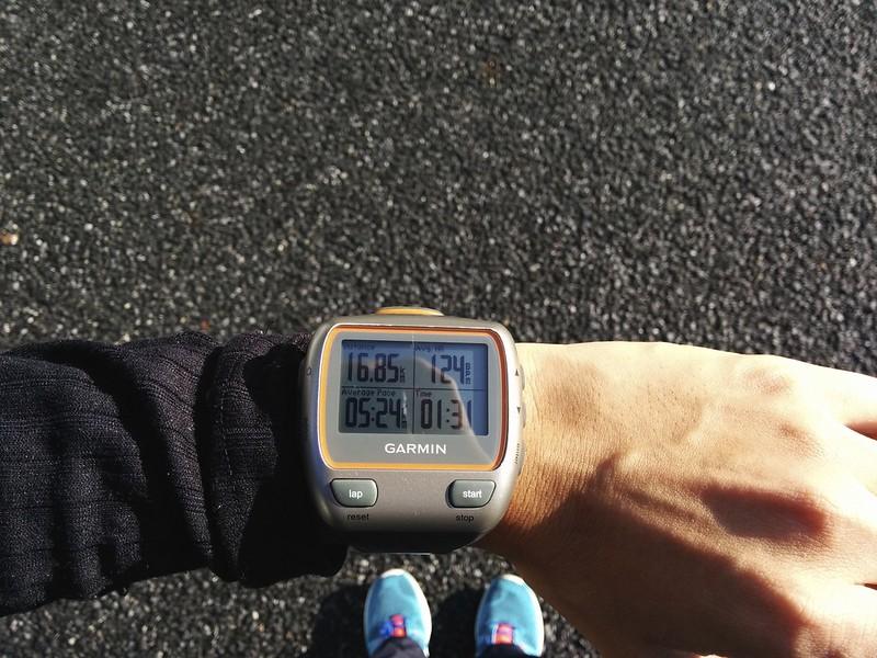 運動量を増やして心拍を下げたい