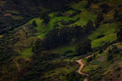 mountains green forest landscape village bolivia andes andean cochabamba tunari andeanvillage losttowns canon550d tunarinationalpark