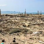 Damage from the Asian Tsunami of 26 December 2004