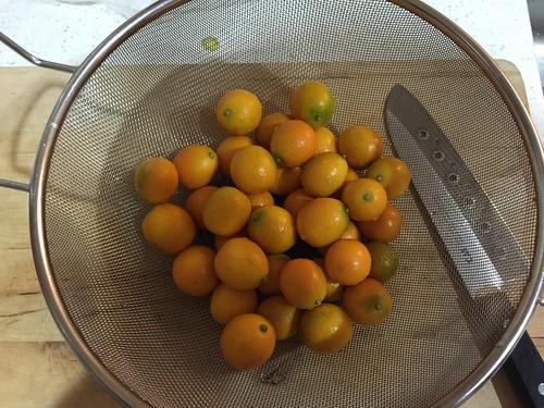 金柑の甘露煮2