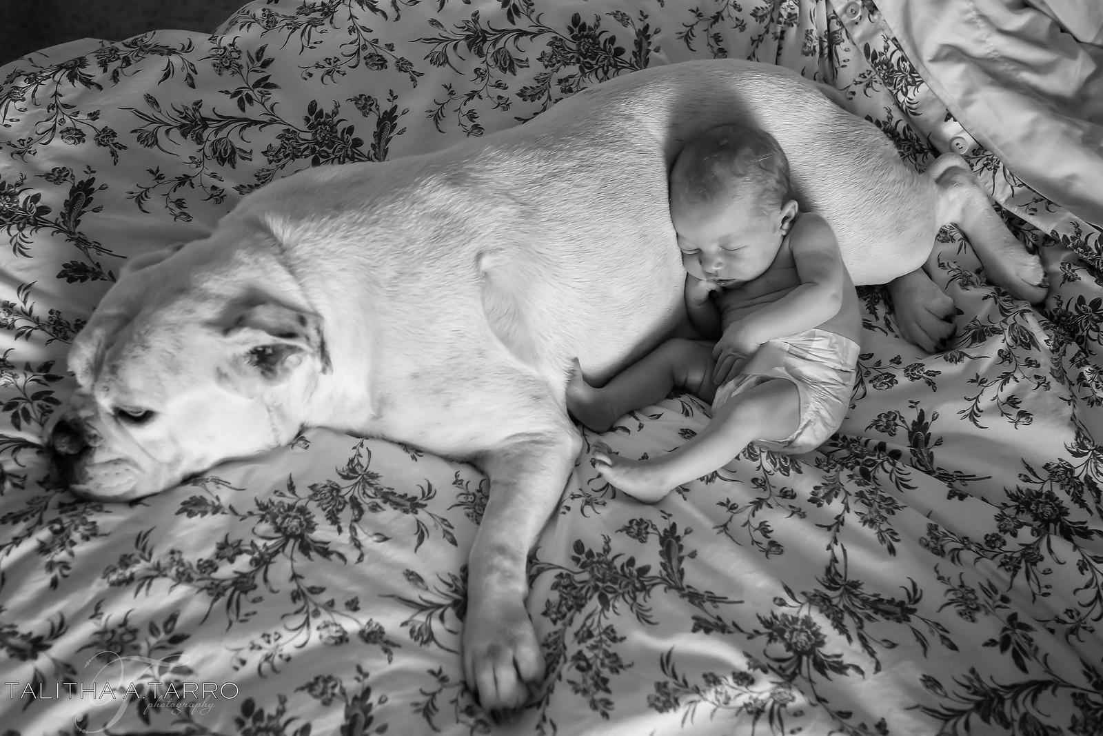 Albuquerque Newborn Photography