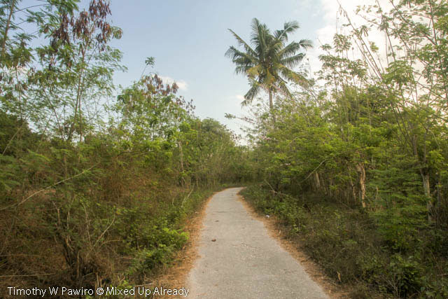 Indonesia - Sumba - Tarimbang - 17 - Road to the beach