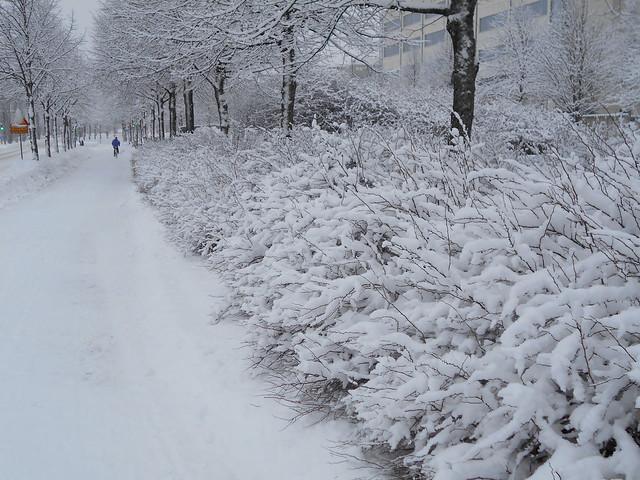 Luminen maisema Paasikiventien varrella Hämeenlinnassa 3.2.2015