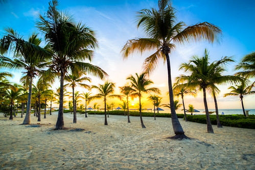 sunset sea beach sunrise canon tramonto mare colours alba c explore colori palme spiaggia luce isola lightroom providenciales 365project giuliomeinardi 5d3
