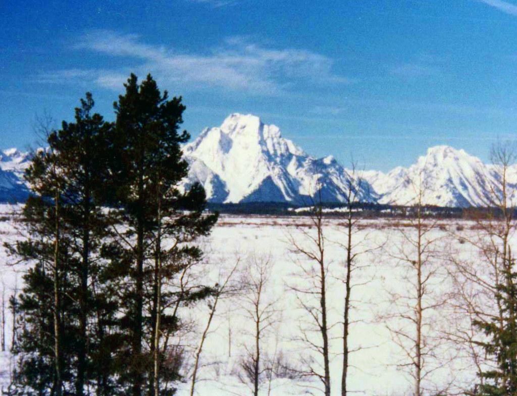 Jackson Mount Moran Winter
