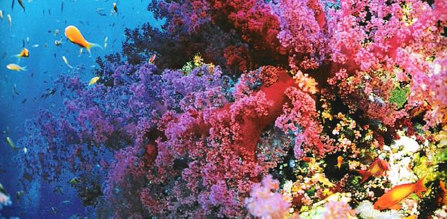 10 nơi sặc sỡ màu sắc nhất thế giới