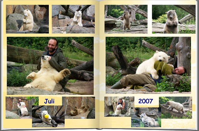 2007_07 Eisbär Knut