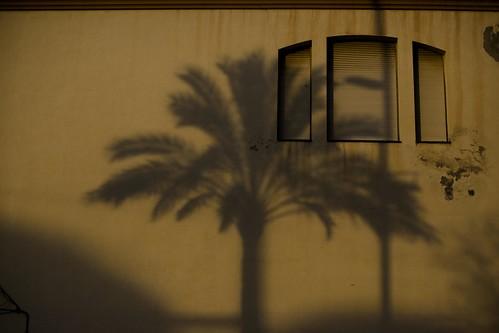 Shadow, Badalona
