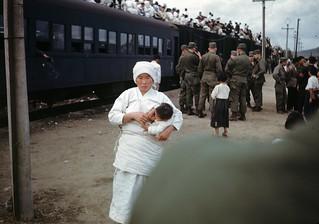 Refugees, 1950