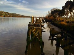 Disused jetty in the Tamar River near Kings Wharf :) #michfrost #jetty