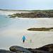 Dog Walking on beach by ellnmllr