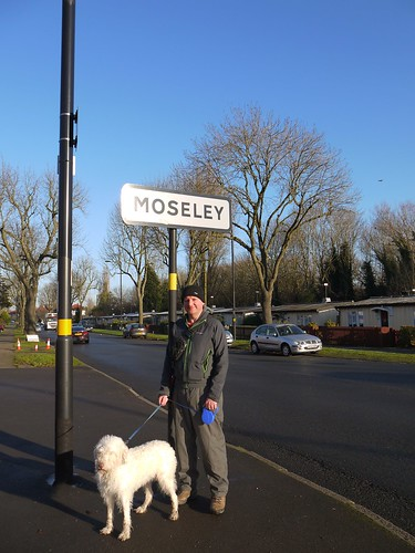 Moseley - Prefab