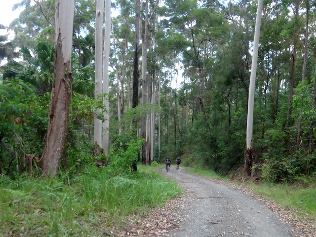 Mount Kilcoy Road